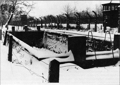 Auschwitz Technique And Operation Of The Gas Chambers Pressac